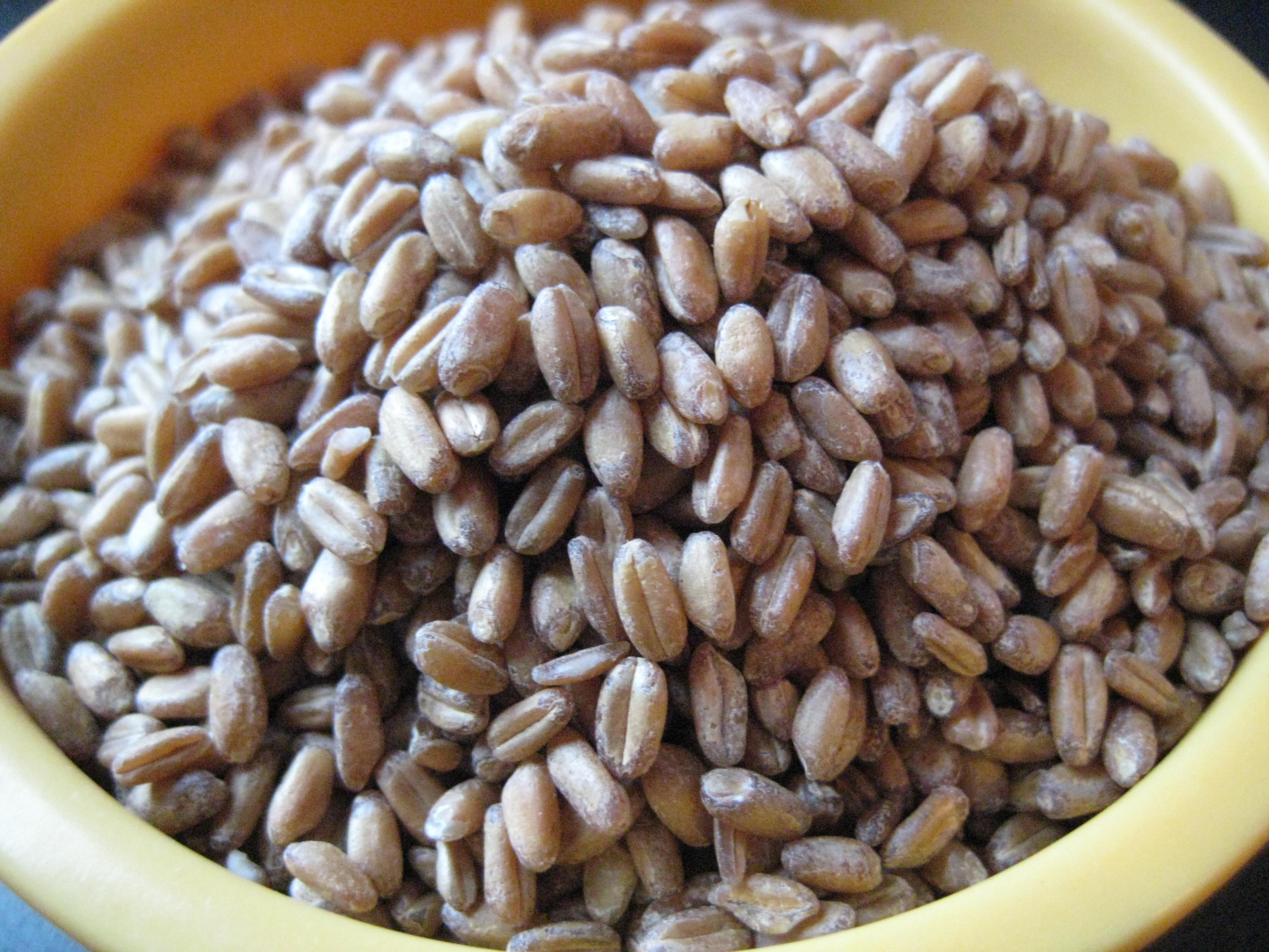 Uncooked Wheat Berries