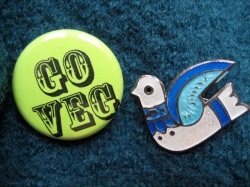 Go Veg pin