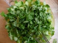 lemon cilantro dressing