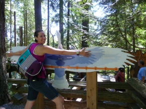 Meg's Wingspan