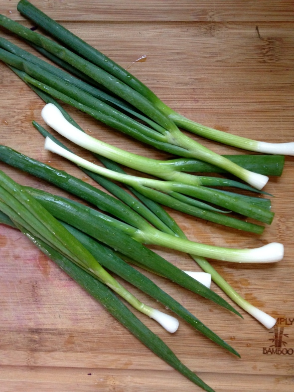 Scallions || Small World Supper Club